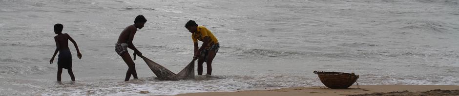 005-Sri_Lanka_2012_-_
