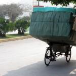 Cat Ba - Fahrradtransporter