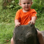 My Son - Felix auf dem Schwein ohne Nase