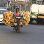 Mopedtransporter