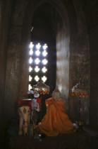 Elefant und Buddha im Dhammayazika