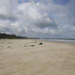 Strand bei Sonne