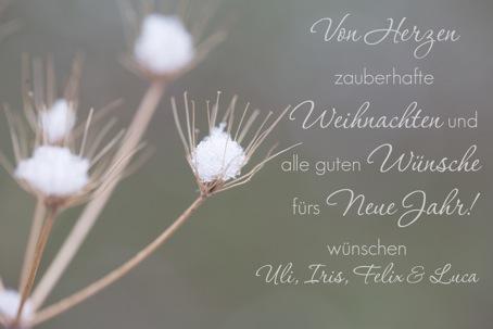 weihnachtskarte02_mitschrift