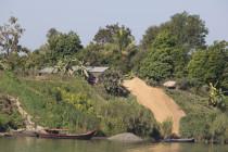 Goldener Reisberg