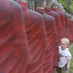 Luca und die Buddhas